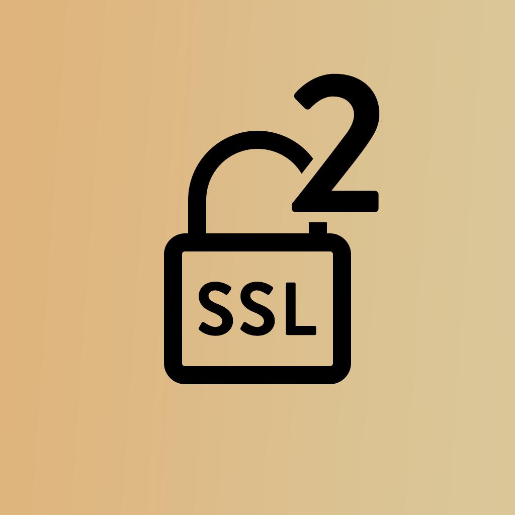 SSL Certificate (1 Year)